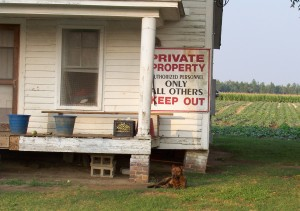 Private property with dog[1]